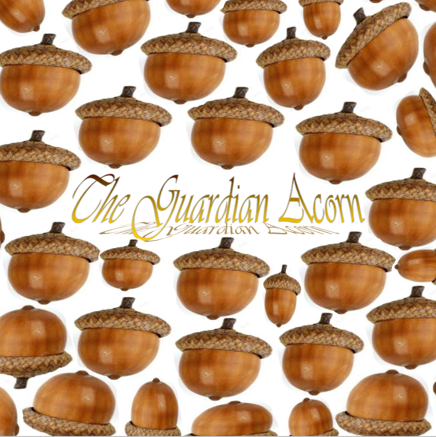The Guardian Acorn | logo